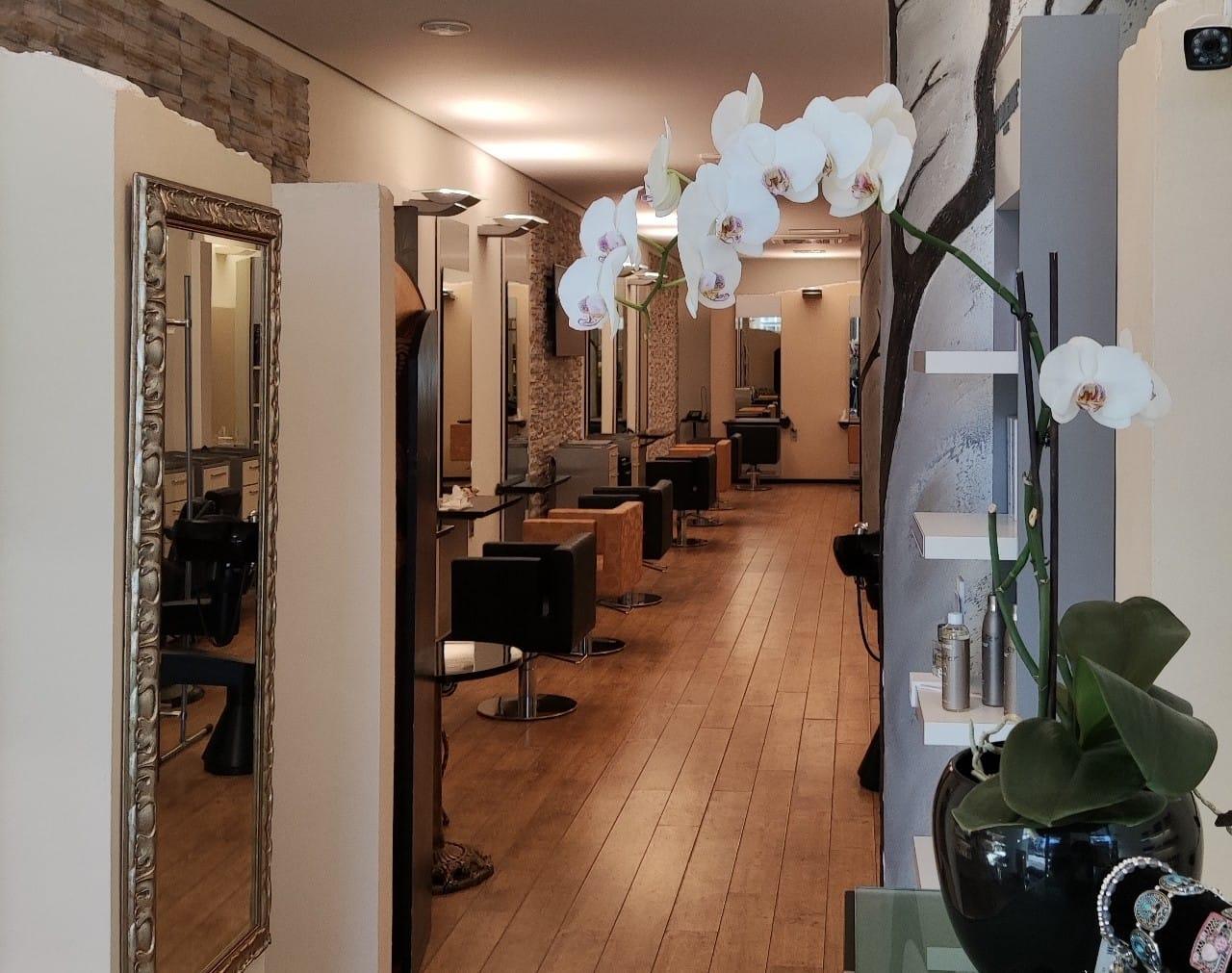 Einblick in Friseursalon Sylvia Schacht in Poppenbüttel